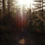 Herbst-Minox_Russland_9_R001-007_07