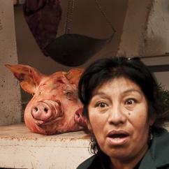Schwein+Mensch_ELA_5001
