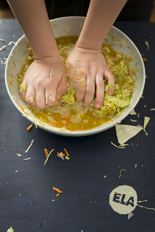 food-fotografie-currykraut-Fermente_ELA9723
