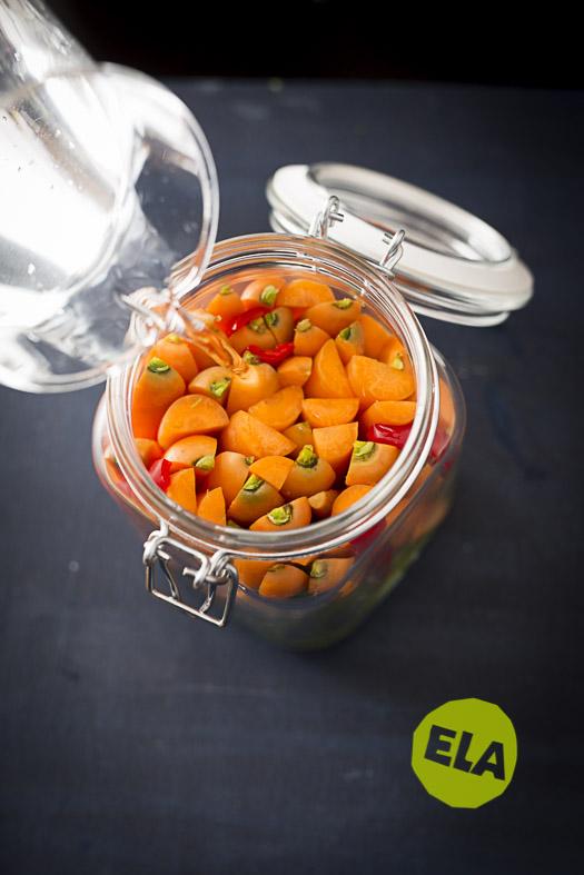 food-fotografie-karotte-Fermente_ELA8994