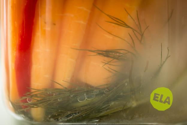 food-fotografie-karotte-fermentiert_ELA0936
